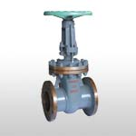 GB/DUN Wedge Cast Steel Gate Valve PN25