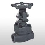 API602 Forged Steel Female Threaded and Socket Welded Gate Valve