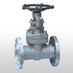 API602 Forged Steel Flange and Butt-welded Gate Valve