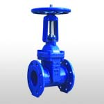 BS Rising Stem Resilient Seated Gate Valve