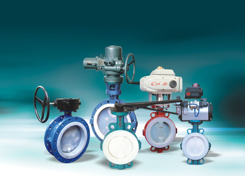 Wafer type butterfly valve(2)