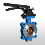B50 High Performance Butterfly Valve